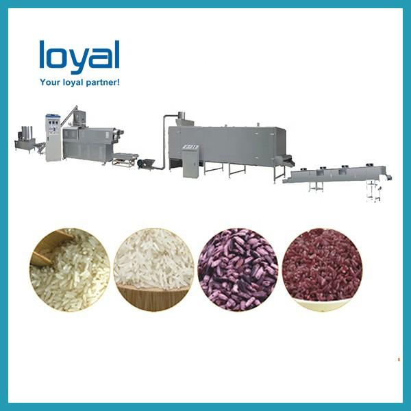 High Quality Instant Porridge Machine Nutritional Rice Flour Making Machine Extruder Production Plant #3 image
